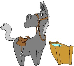 horse-drinking-water-clipart-1